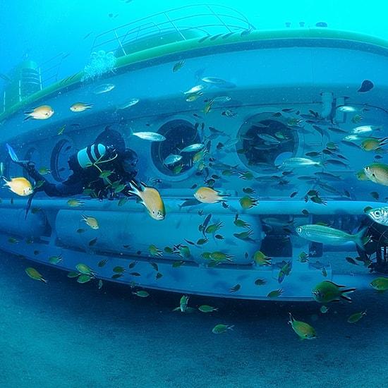 Ténérife sous-marin