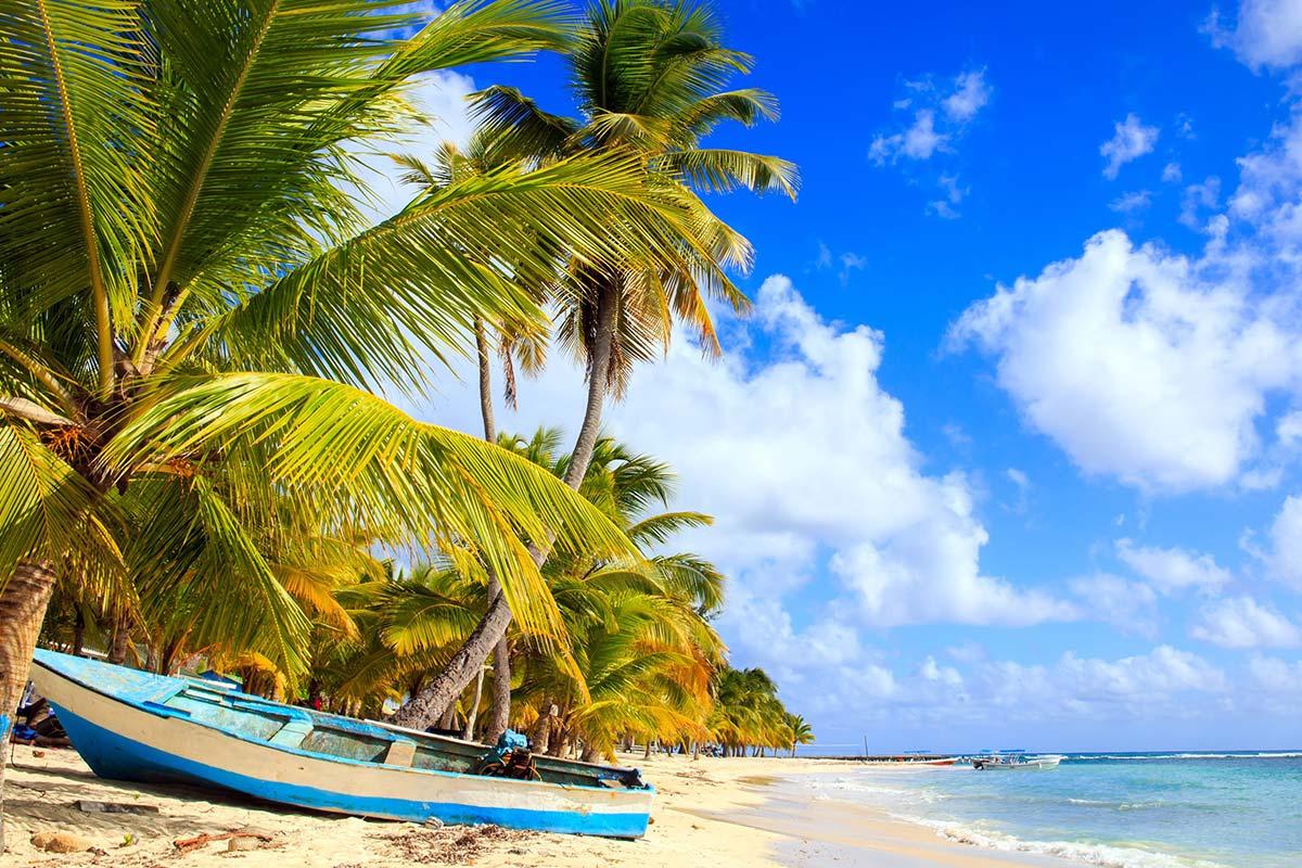 plage de sable fin, cocotiers, palmiers, mer turquoise des caraïbes, île saona, république dominicaine